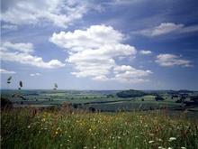 Click for a larger image of Brimsdown Hill